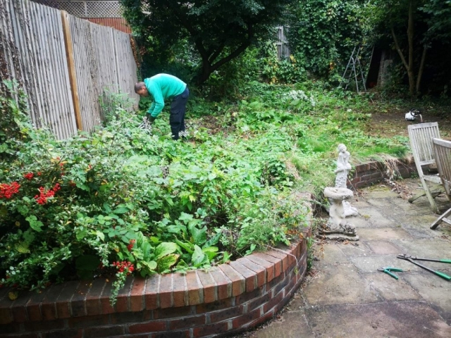 Garden Clean Up South East London