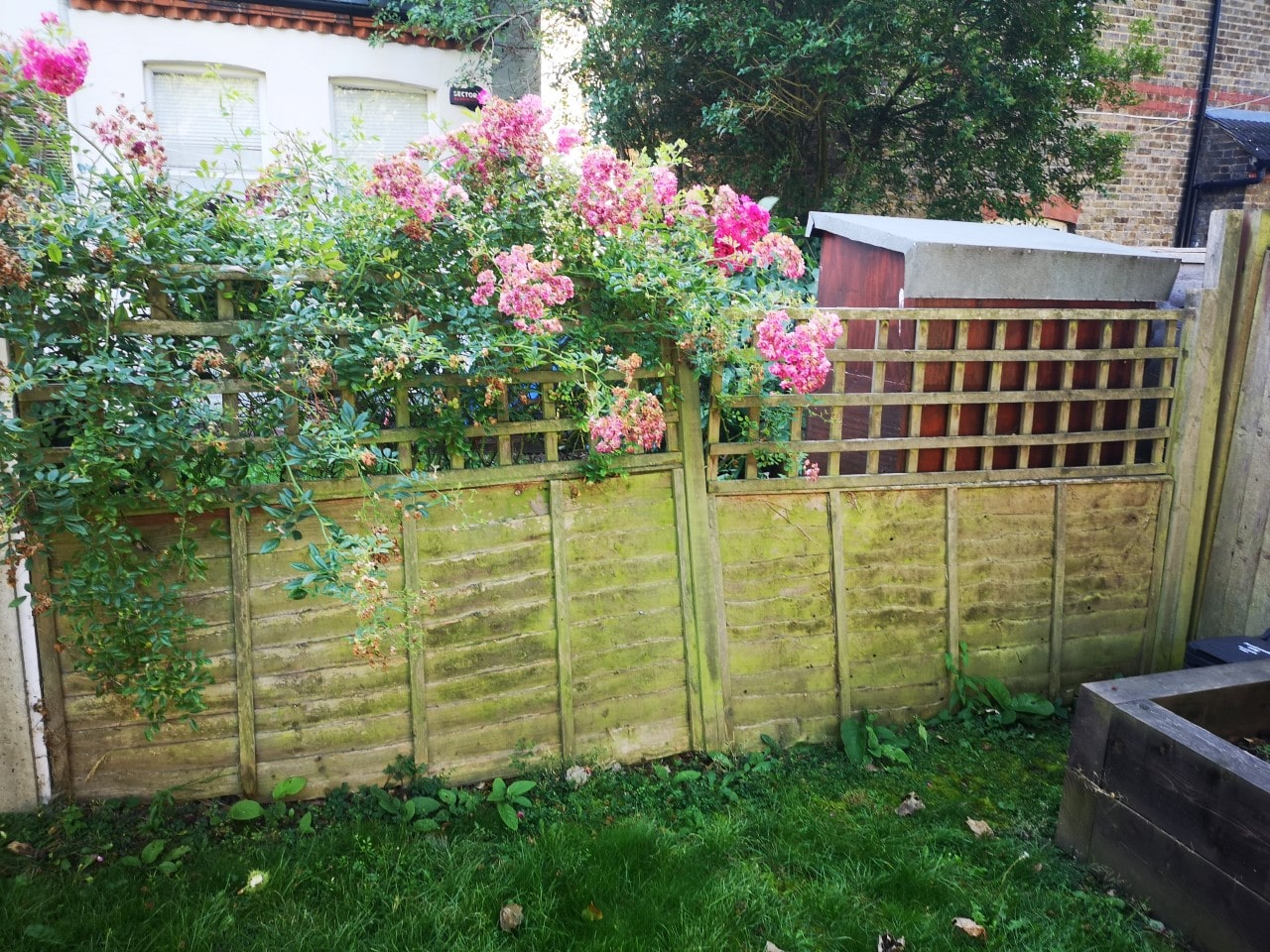 Garden Fence Installation South East London