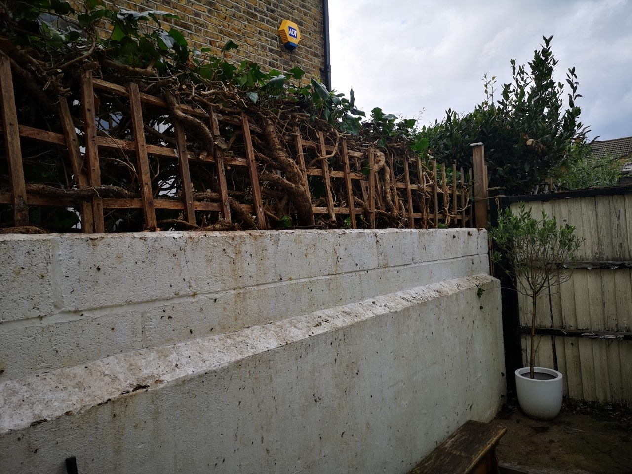 Gardening Services South East London