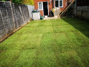 Lawn Laying South East London