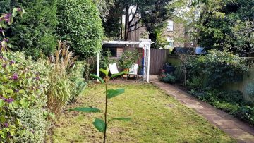 7 Tips to Keep Your Garden Clean and Tidy